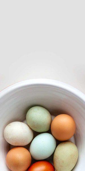 eggs-300x600 eggs
