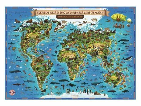 Атлас животный и растительный мир земли